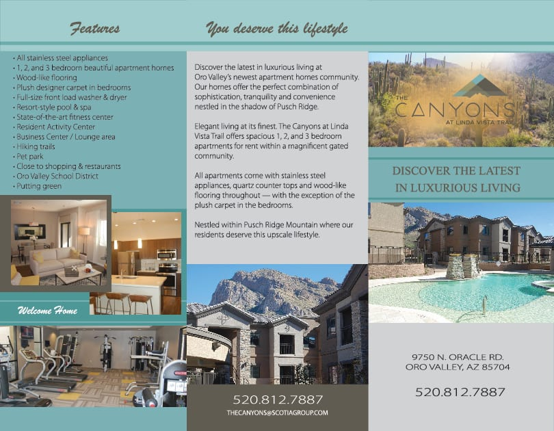 graphic and business card design The Canyon trifold design side one